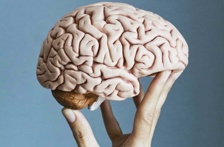 Can We Improve Our Brain PowerWith Simple Dietary and Lifestyle Changes?